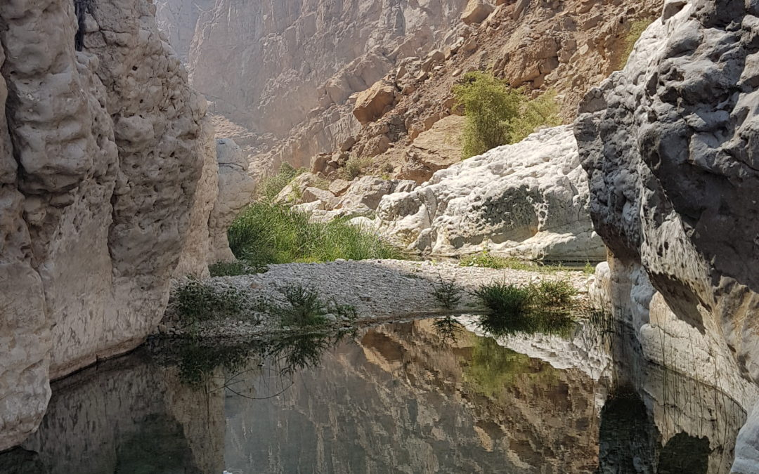 Two Days of Exploring Oman, Camping and Hiking in the Hajar Mountains